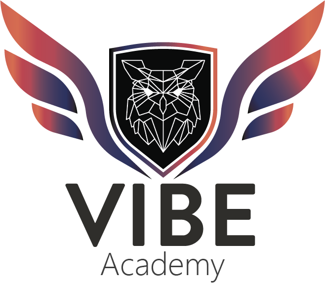 Vibe.MD – Academie ᴵᵀ